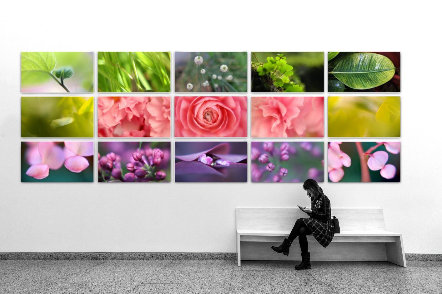 Wandbeispiel-BildKOMPOSITIONEN_2-Fotografie-LEO-and-FISH-photography-klein